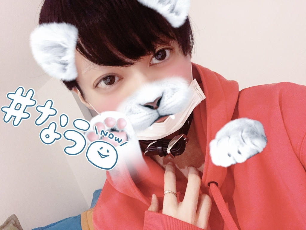 f:id:yuzubaferret:20181025211309j:plain