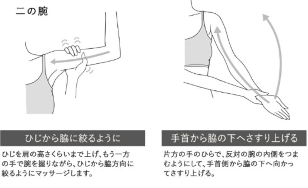 f:id:yuzubaferret:20181028225805p:plain