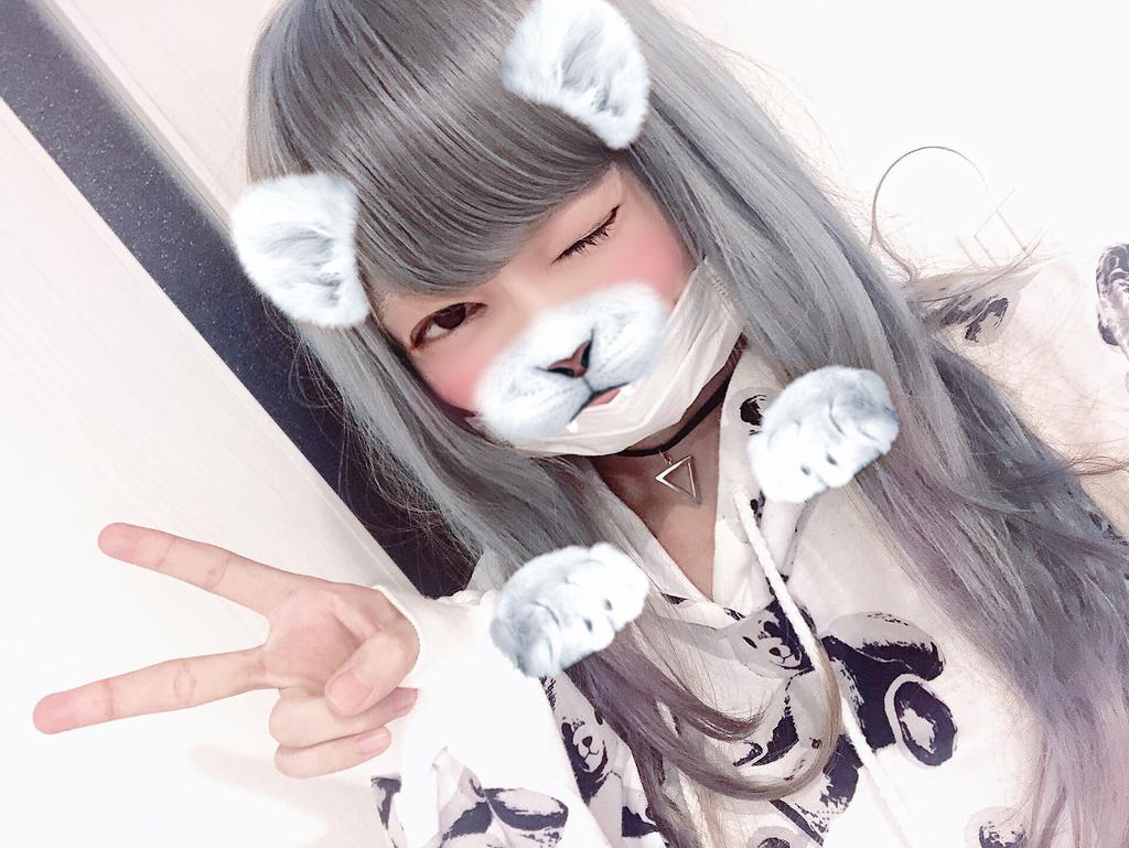 f:id:yuzubaferret:20181030211236j:plain