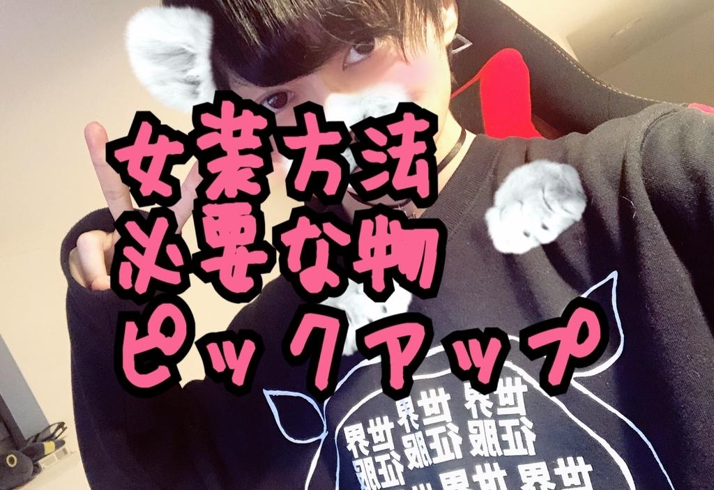 f:id:yuzubaferret:20181114155132j:plain