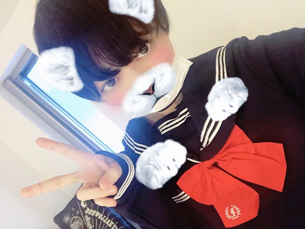 f:id:yuzubaferret:20181124152755j:plain