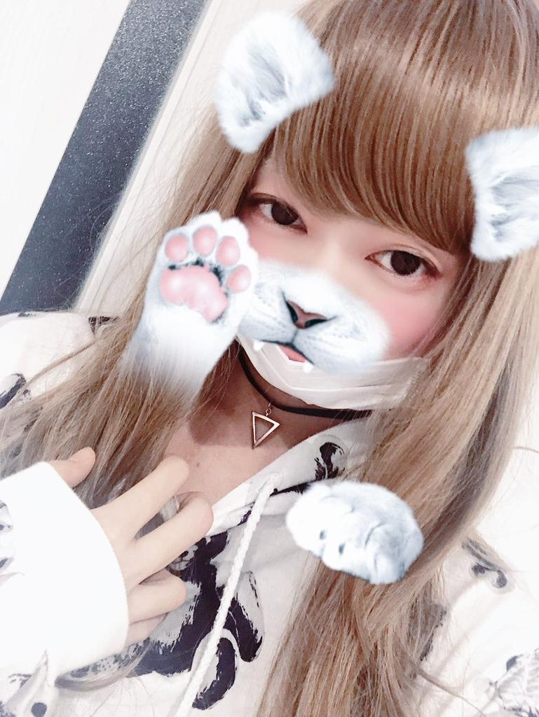 f:id:yuzubaferret:20181124161349j:plain