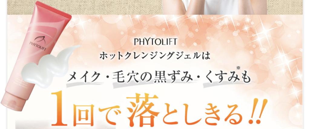 f:id:yuzubaferret:20181126143127p:plain