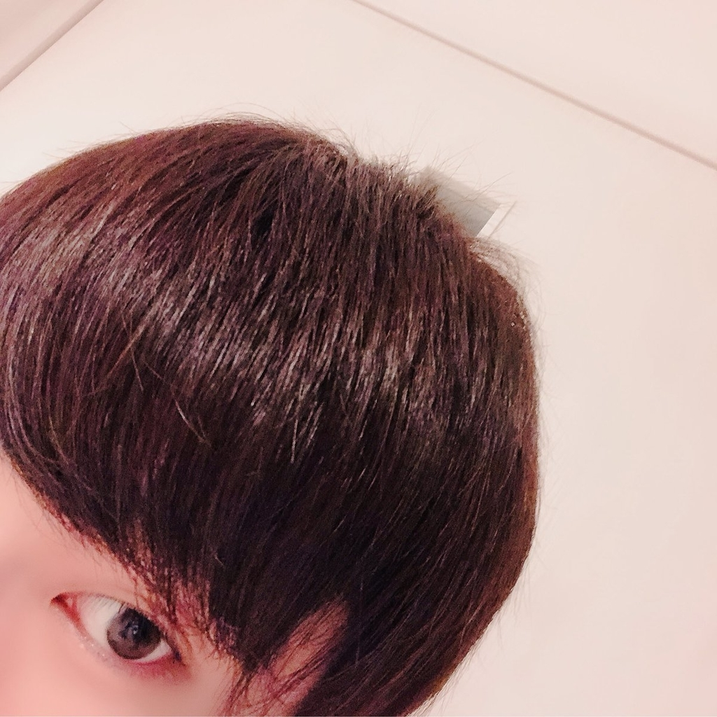 f:id:yuzubaferret:20181208102518j:plain