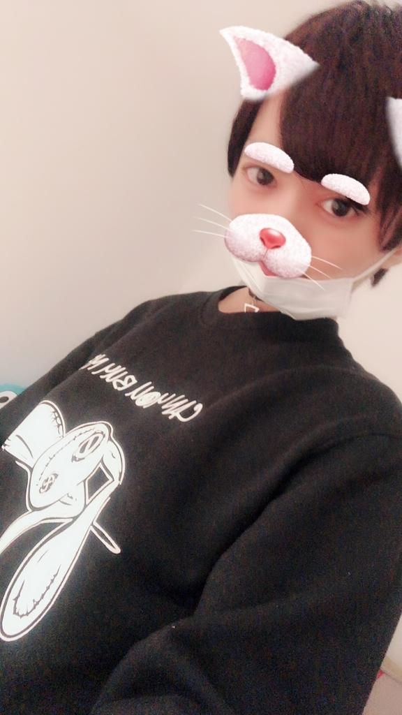 f:id:yuzubaferret:20181215153507j:plain
