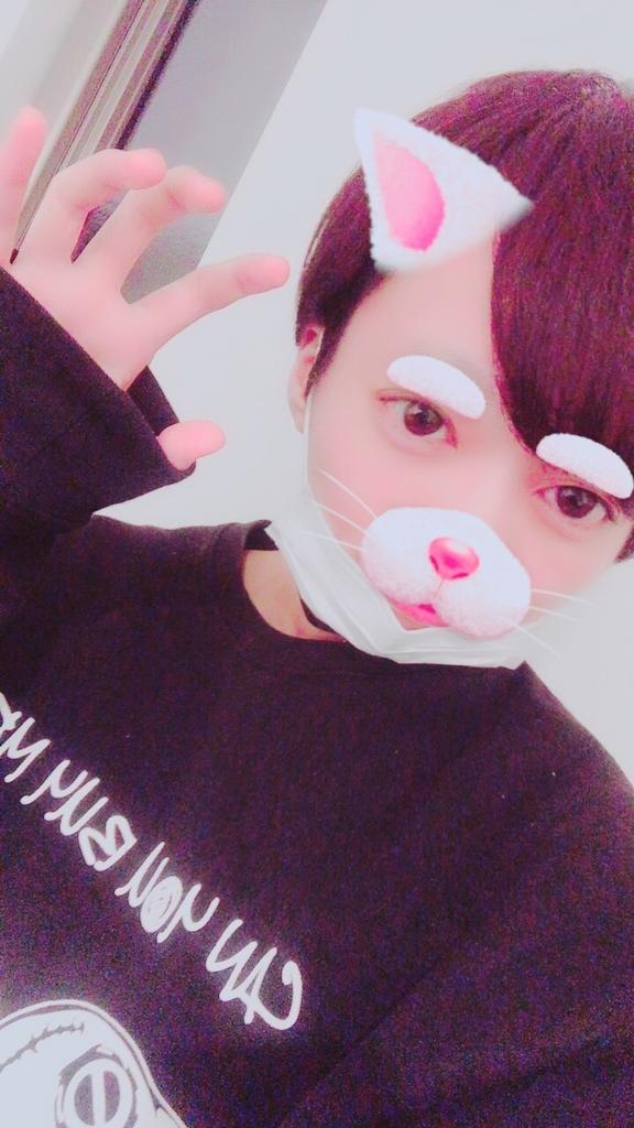 f:id:yuzubaferret:20181216172456j:plain