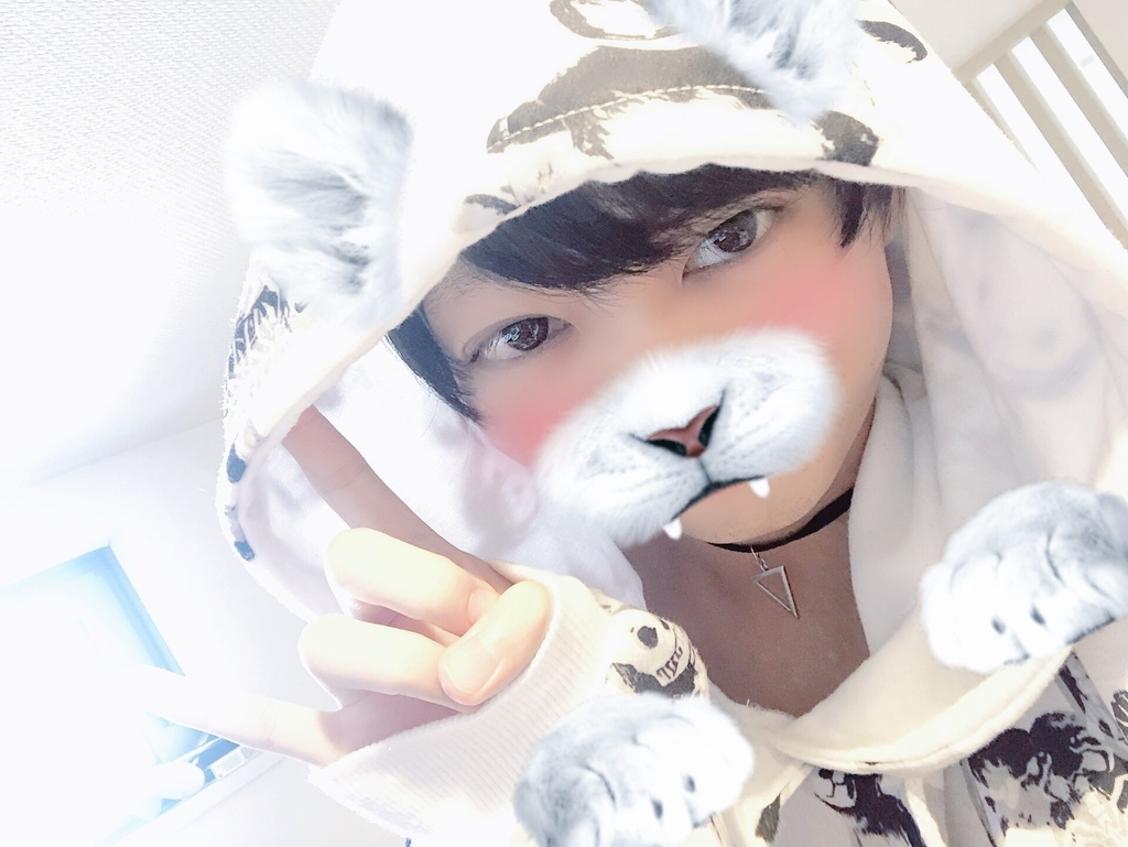 f:id:yuzubaferret:20181216172945j:plain
