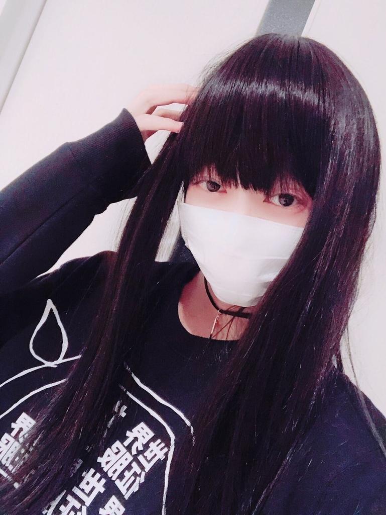 f:id:yuzubaferret:20181229170153j:plain