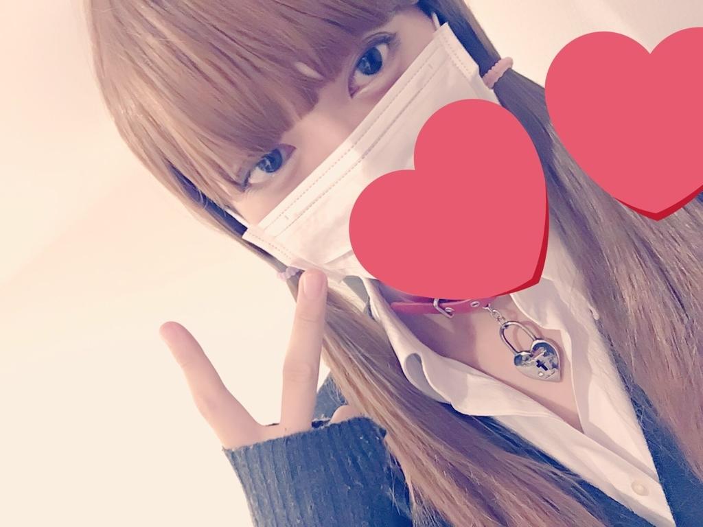 f:id:yuzubaferret:20181229225945j:plain