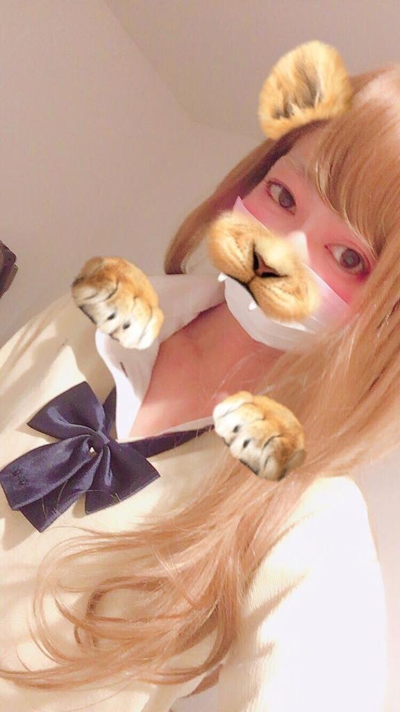 f:id:yuzubaferret:20181231153041j:plain