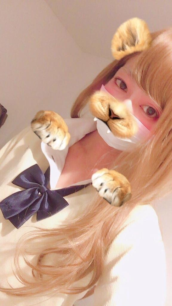 f:id:yuzubaferret:20190123151406j:plain