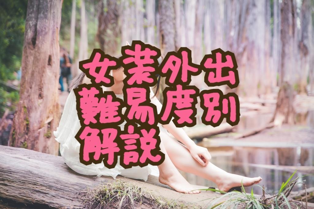 f:id:yuzubaferret:20190209151006j:plain
