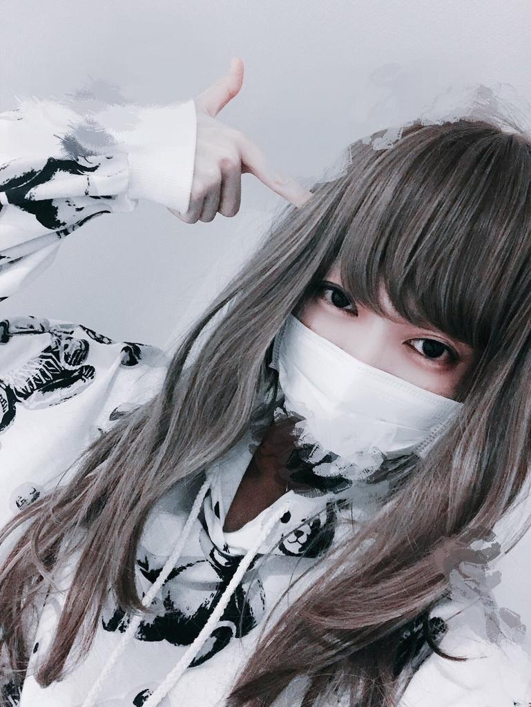 f:id:yuzubaferret:20190213203013j:plain
