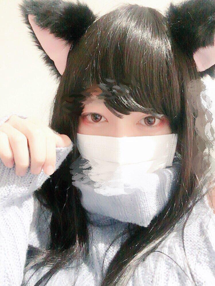 f:id:yuzubaferret:20190213205459j:plain
