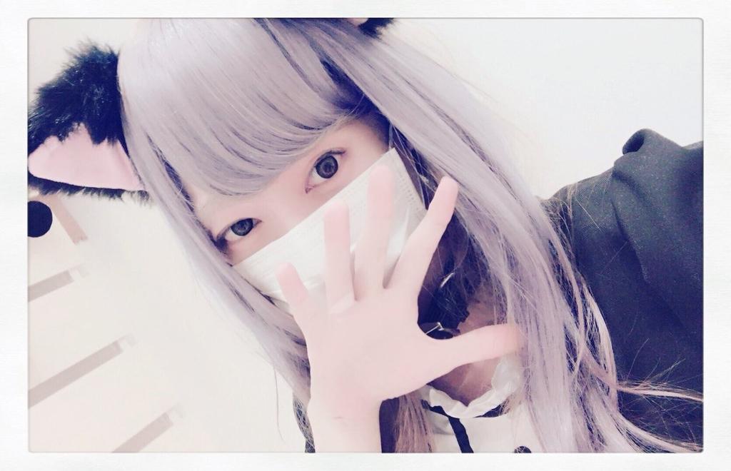 f:id:yuzubaferret:20190221153251j:plain