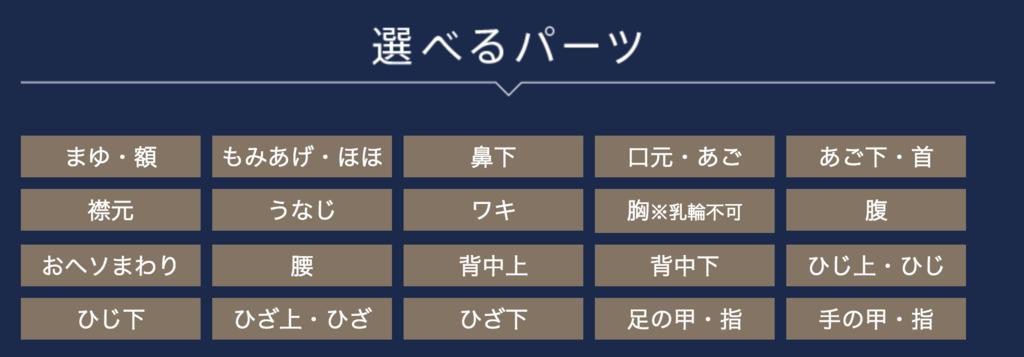 f:id:yuzubaferret:20190221213736p:plain