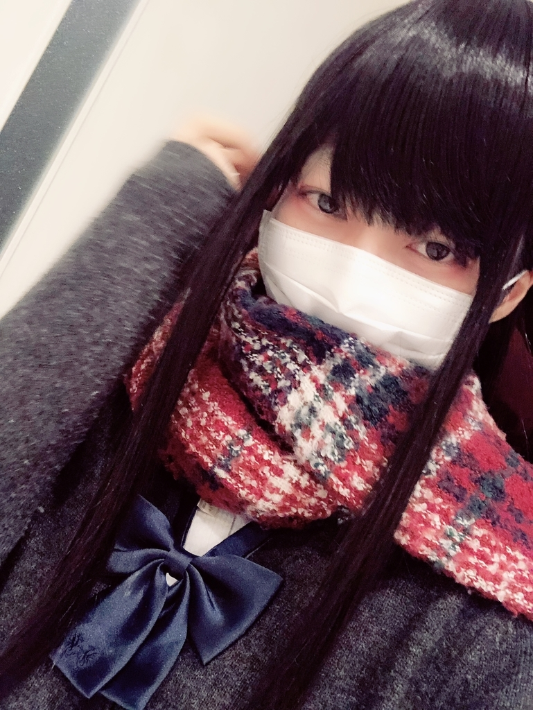 f:id:yuzubaferret:20190302130223j:plain