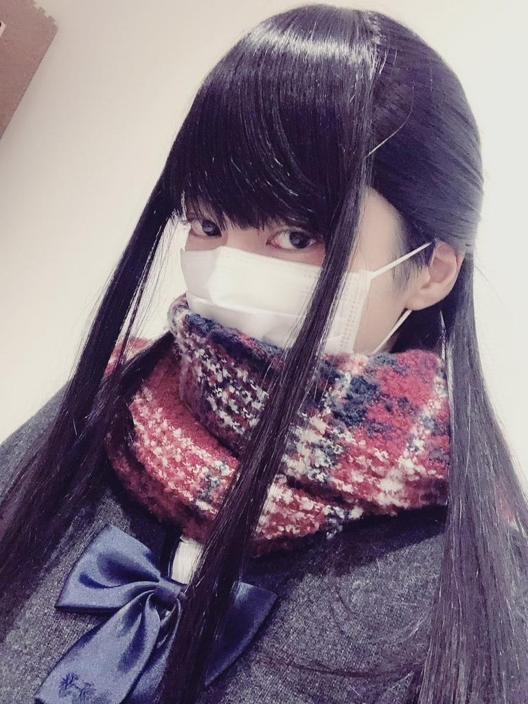 f:id:yuzubaferret:20190303205041j:plain