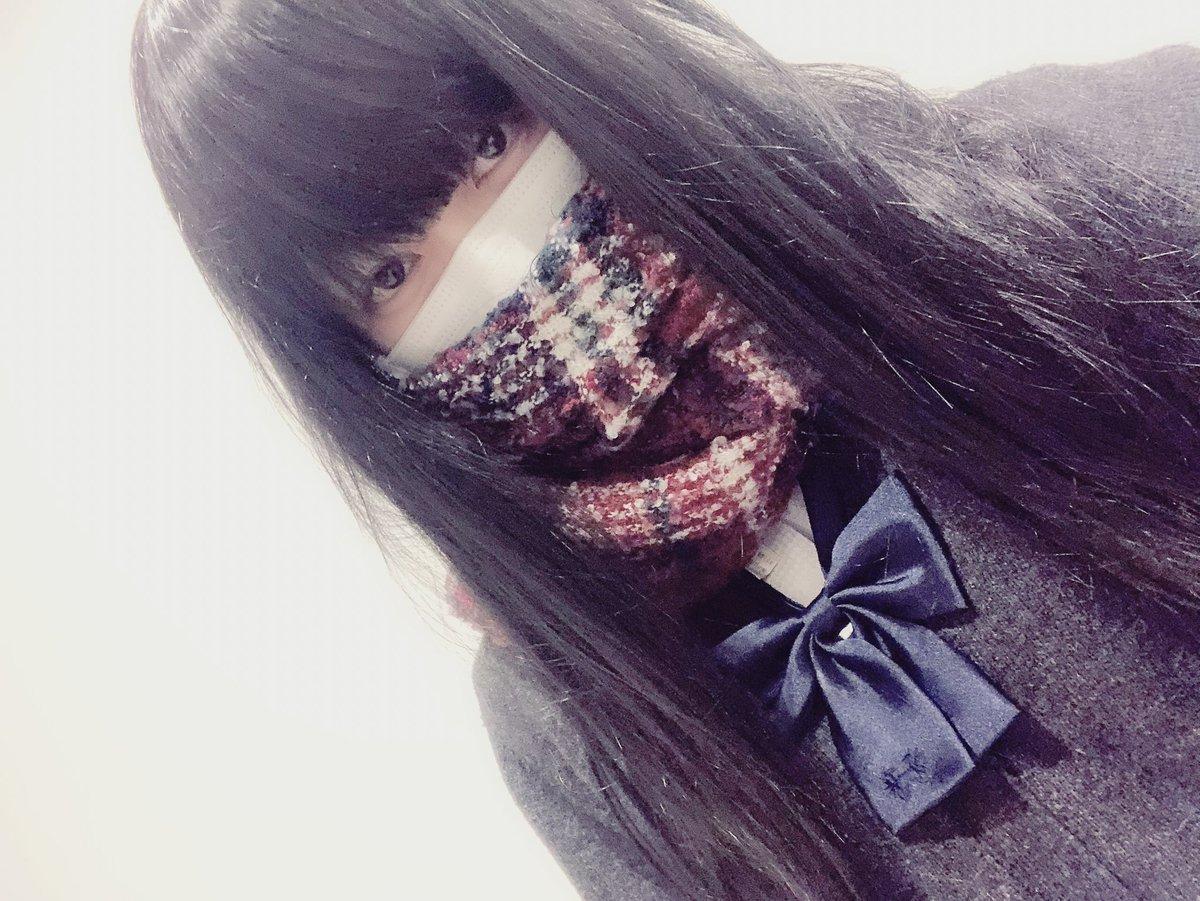 f:id:yuzubaferret:20190314175317j:plain
