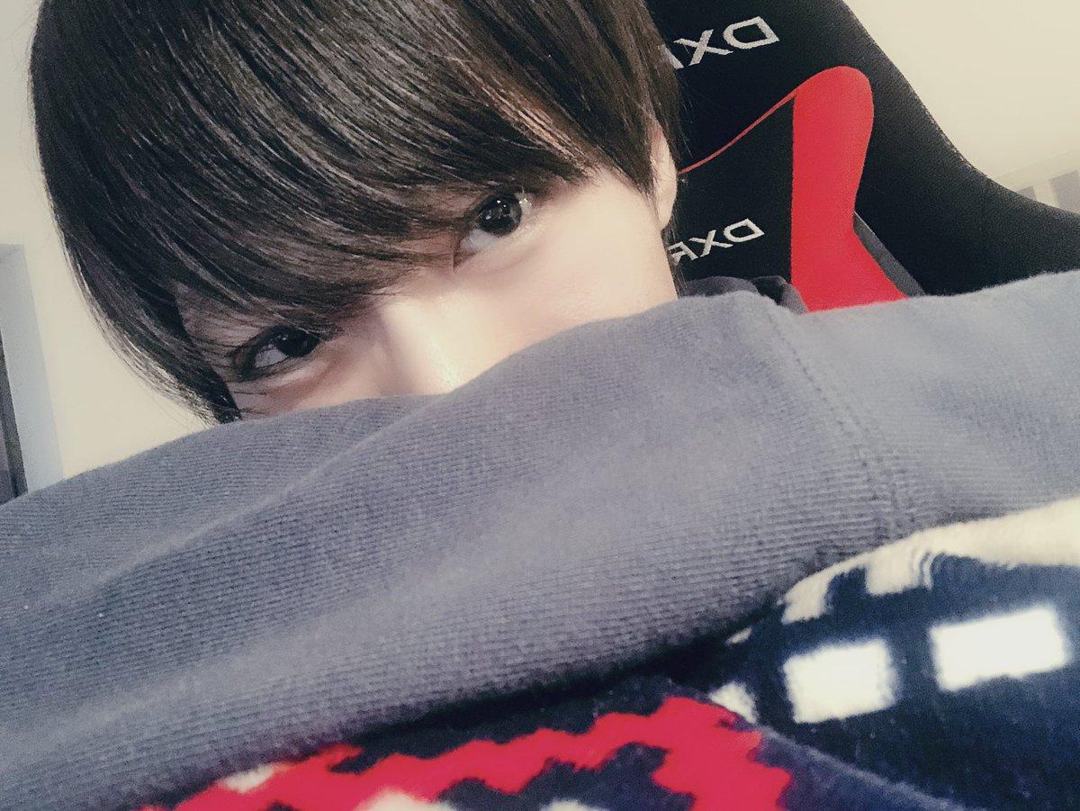 f:id:yuzubaferret:20190317172951j:plain