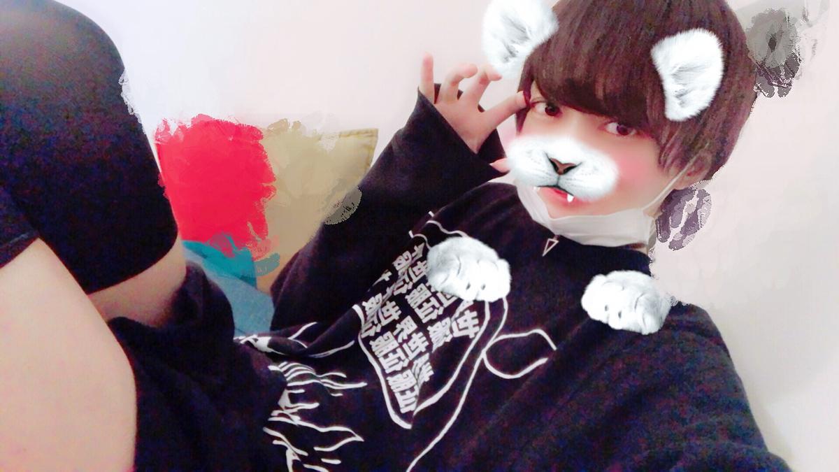 f:id:yuzubaferret:20190320215719j:plain