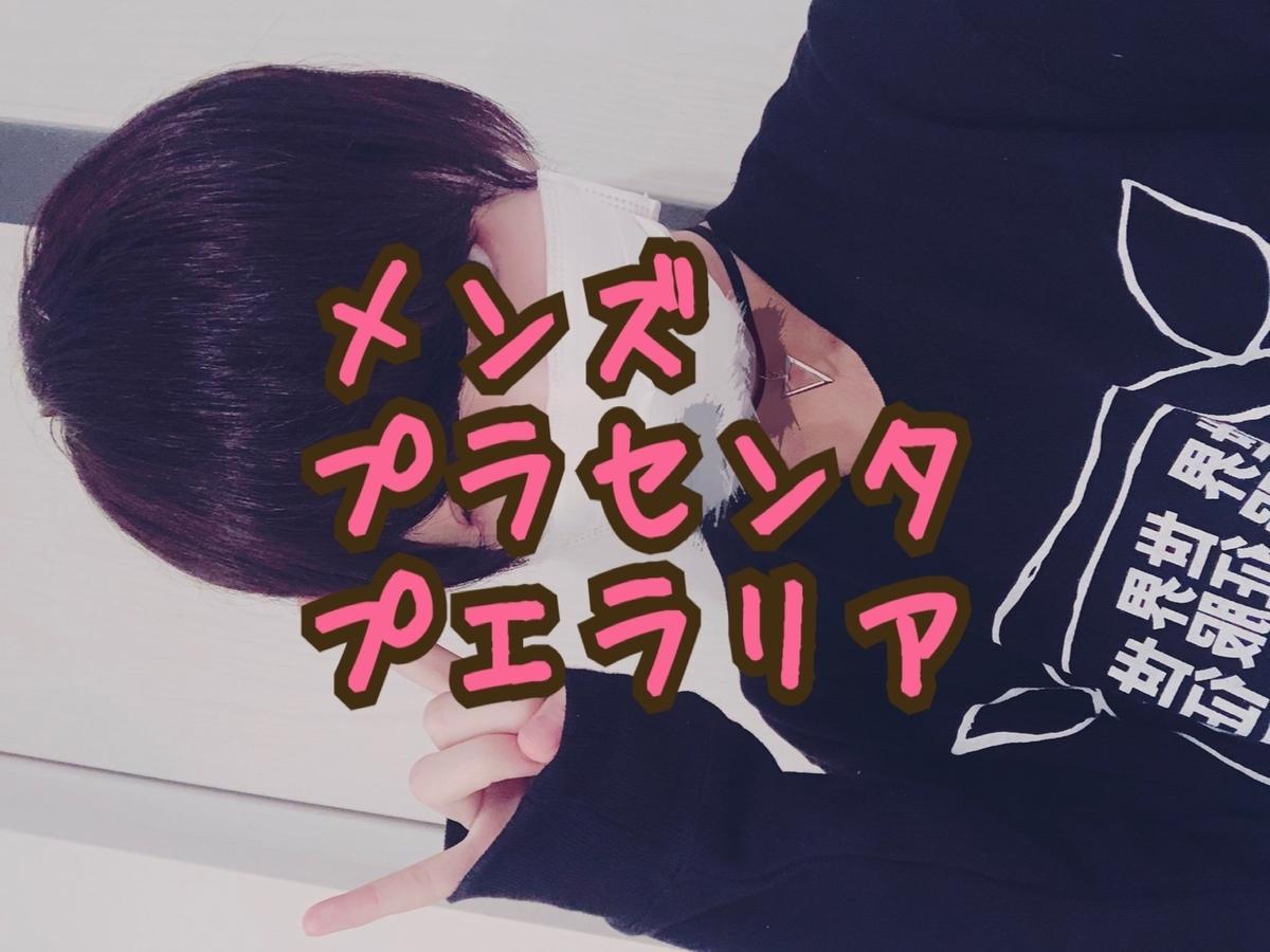 f:id:yuzubaferret:20190320231528j:plain