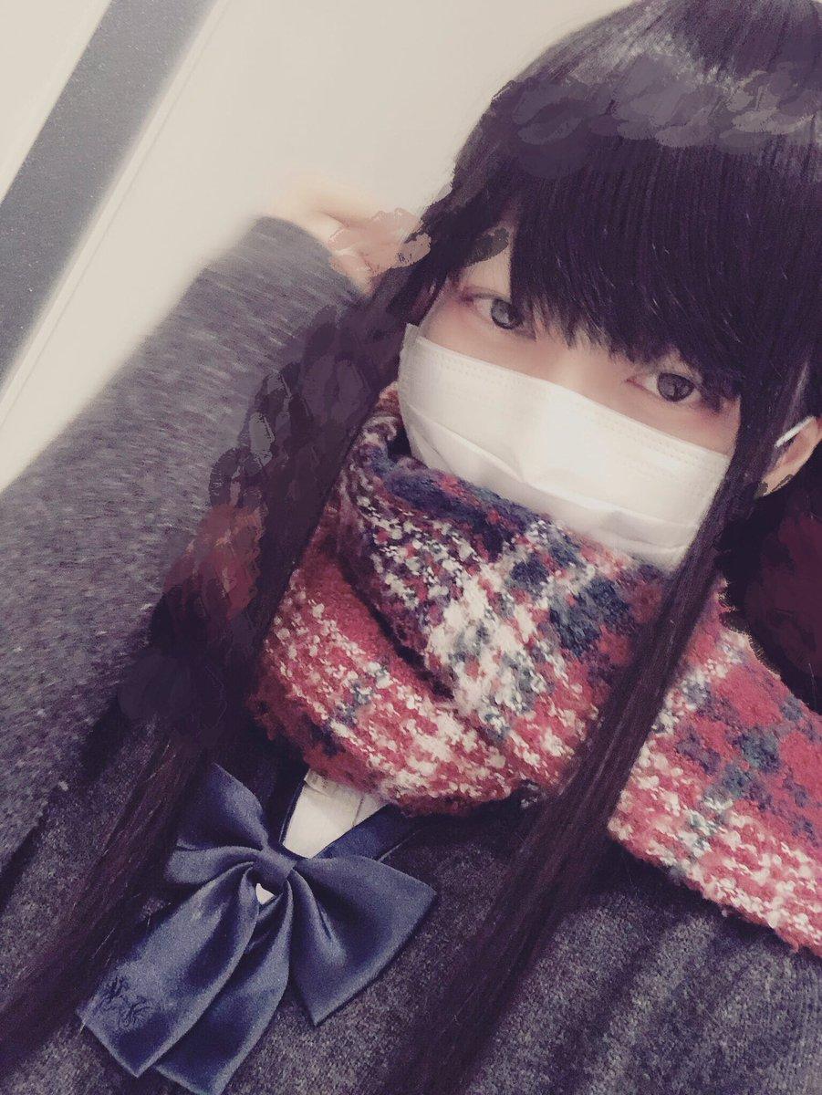f:id:yuzubaferret:20190329170151j:plain