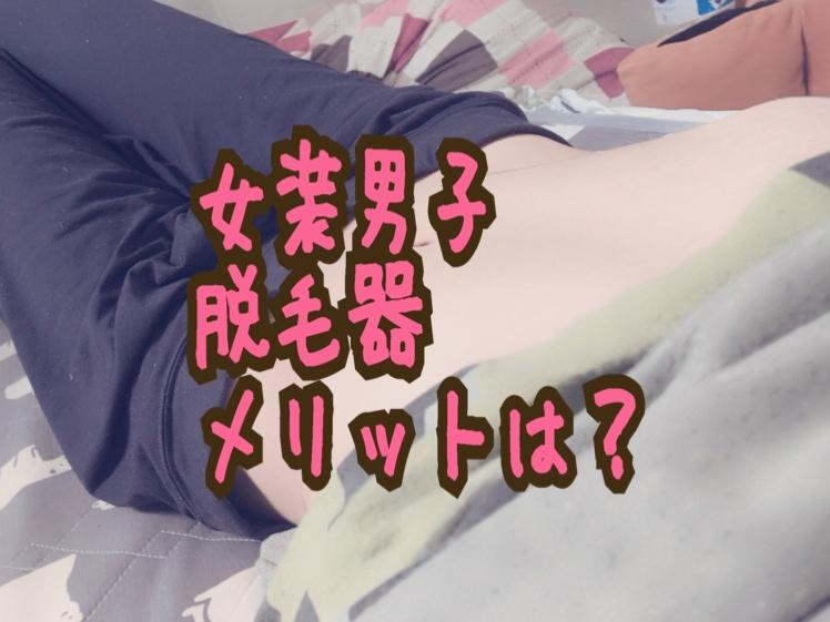 f:id:yuzubaferret:20190331143915j:plain