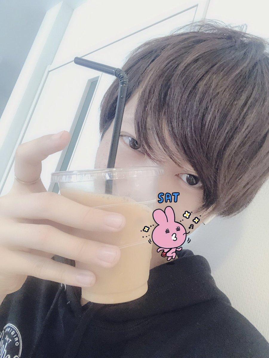 f:id:yuzubaferret:20190420163030j:plain