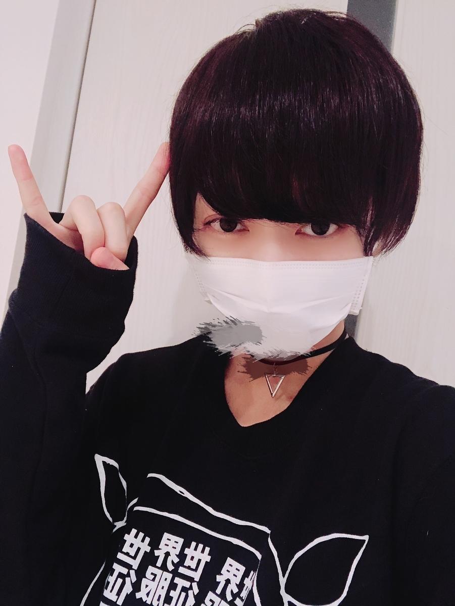 f:id:yuzubaferret:20190511192240j:plain