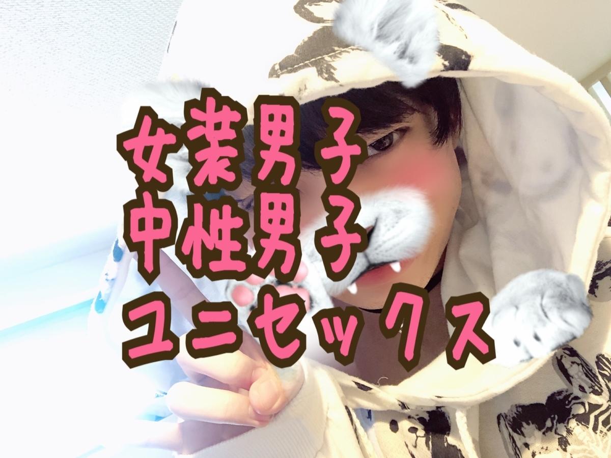 f:id:yuzubaferret:20190526152803j:plain
