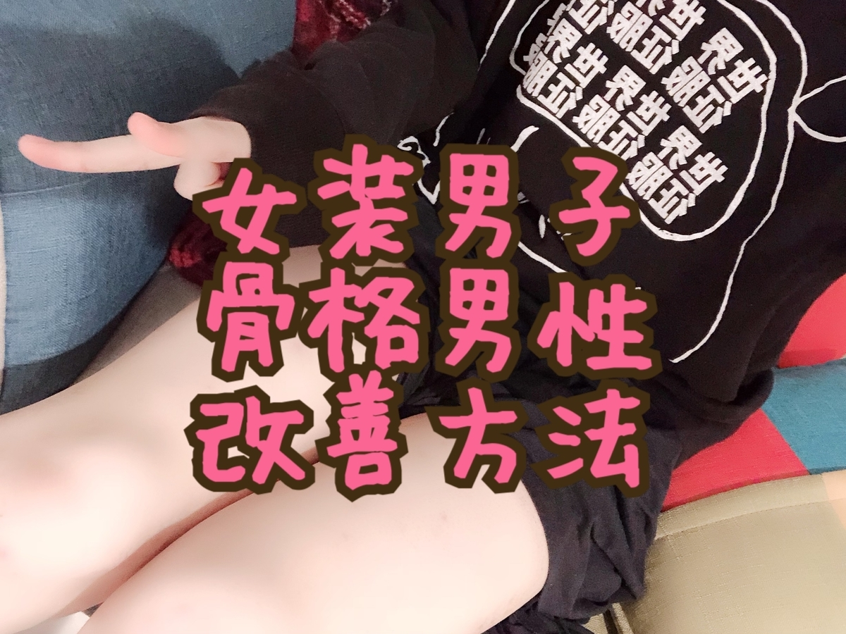 f:id:yuzubaferret:20190529002652j:plain