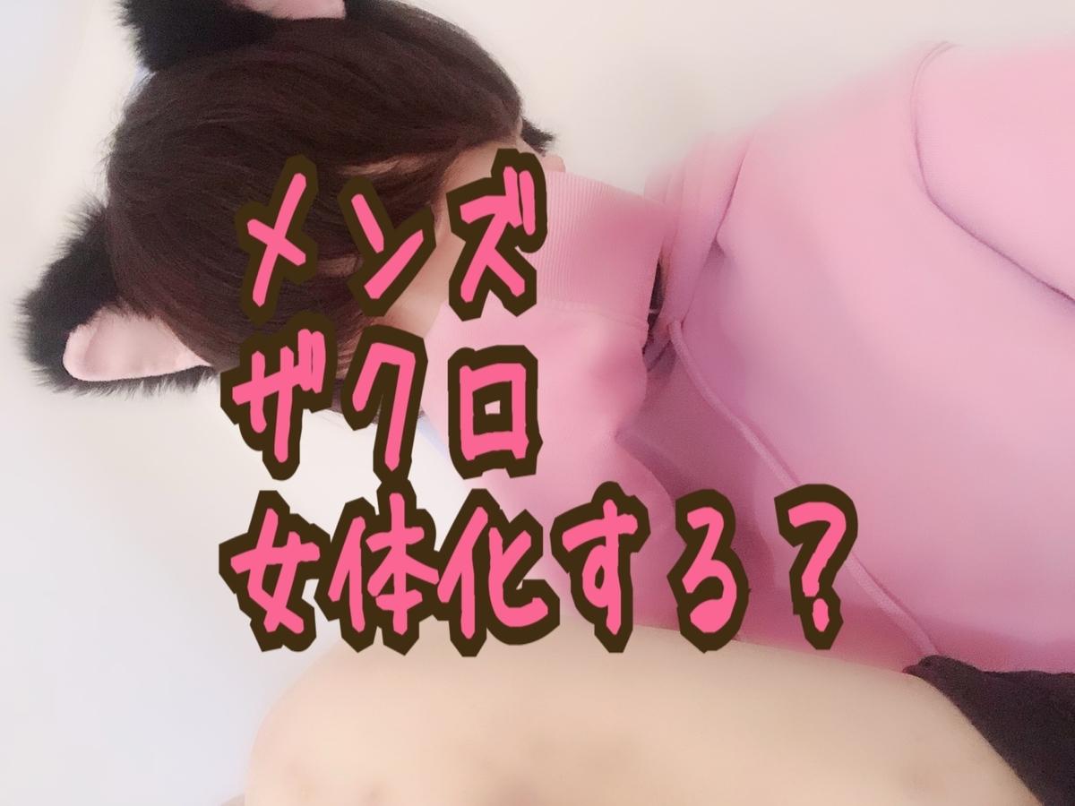 f:id:yuzubaferret:20190530140751j:plain