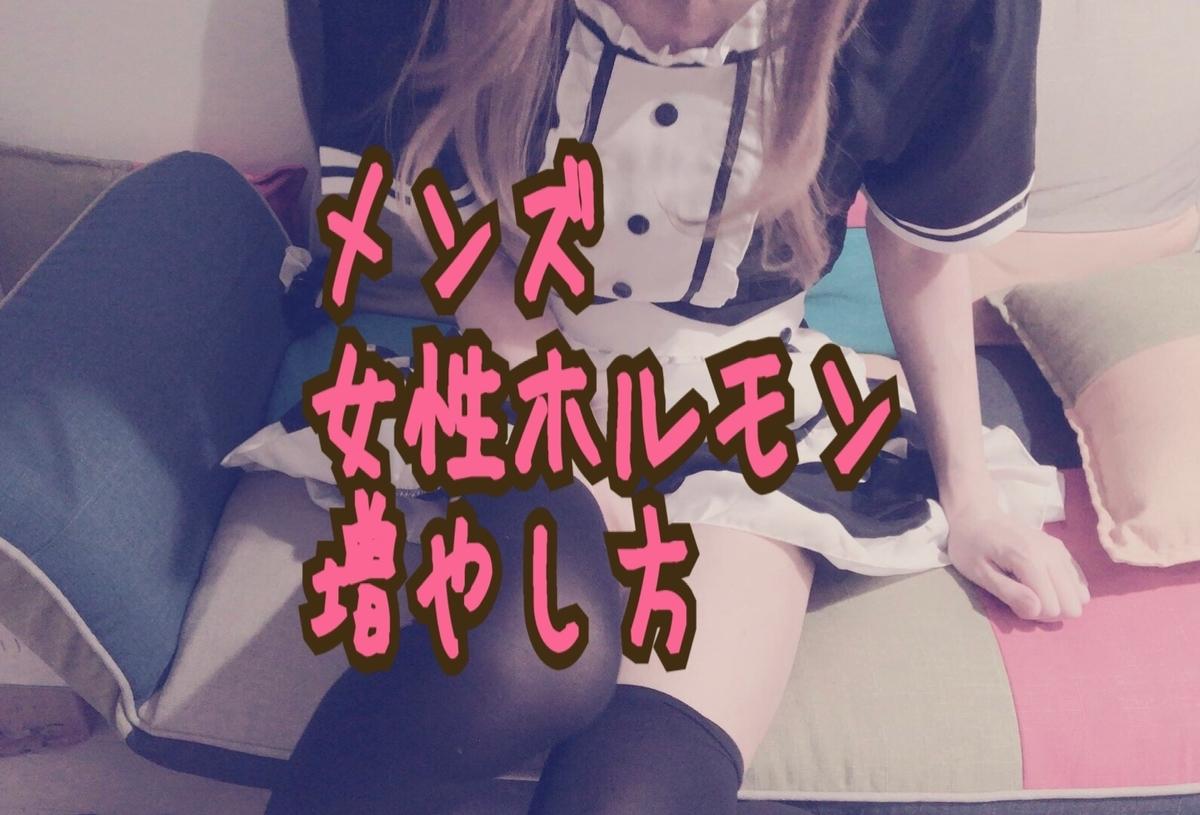 f:id:yuzubaferret:20190530174142j:plain