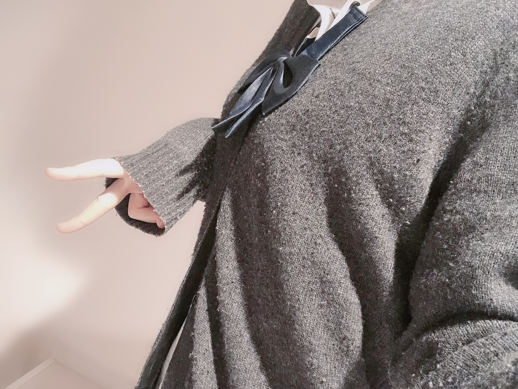 f:id:yuzubaferret:20190614152044j:plain