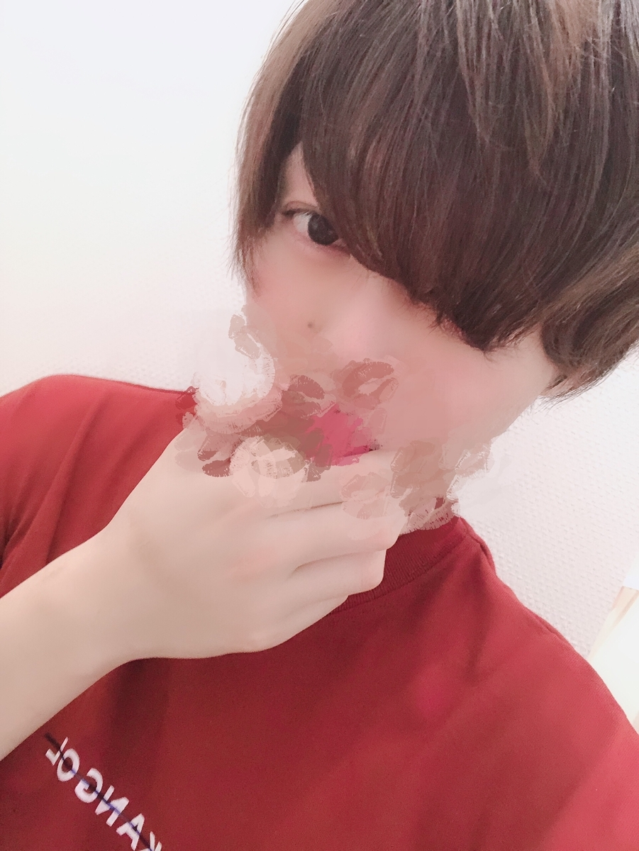 f:id:yuzubaferret:20190624150621j:plain