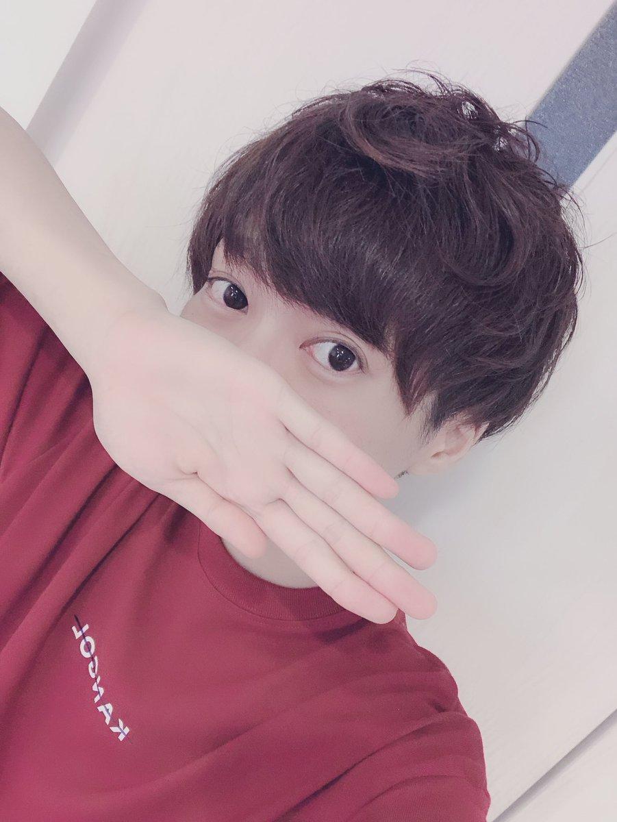 f:id:yuzubaferret:20190628233910j:plain