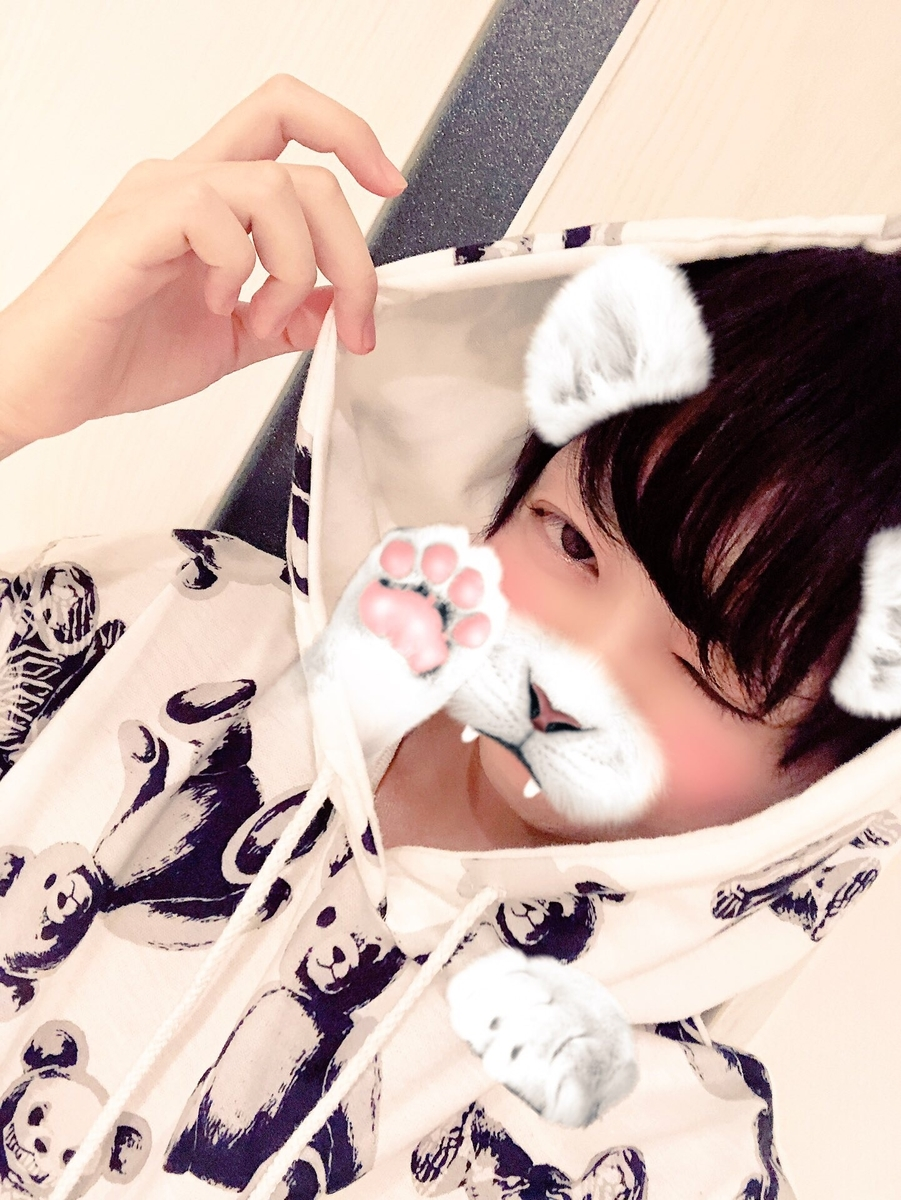 f:id:yuzubaferret:20190727131824j:plain