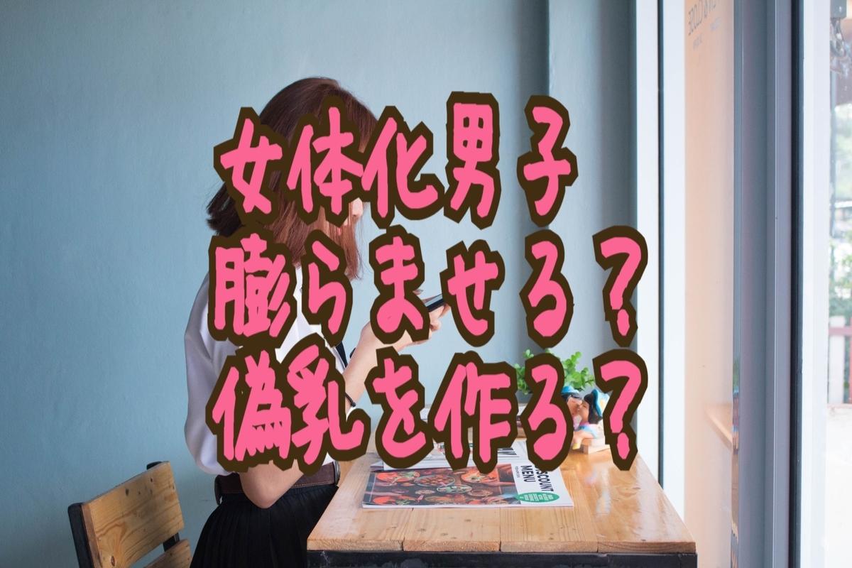 f:id:yuzubaferret:20190813005748j:plain
