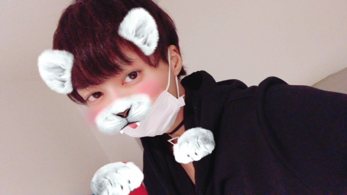 f:id:yuzubaferret:20190815141907j:plain