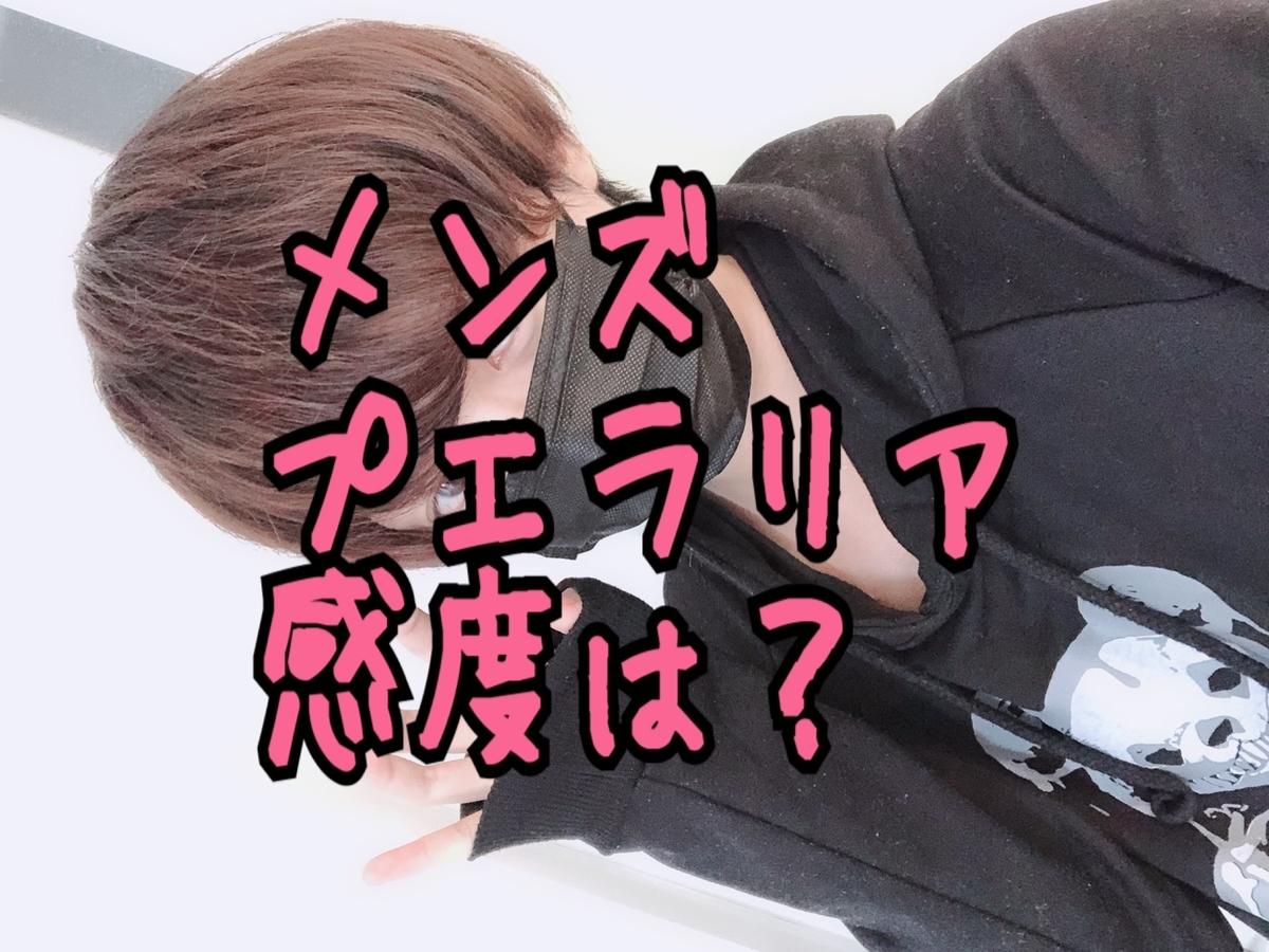 f:id:yuzubaferret:20190816205200j:plain
