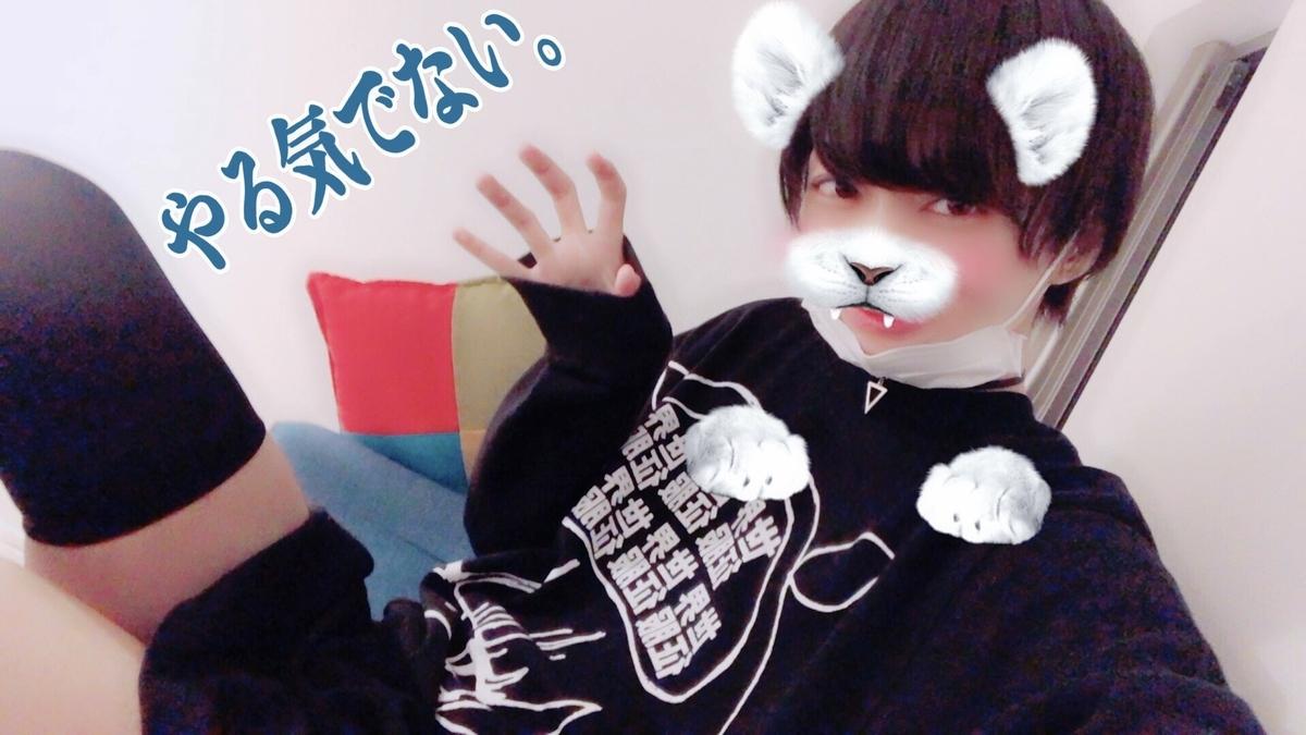 f:id:yuzubaferret:20190818123132j:plain