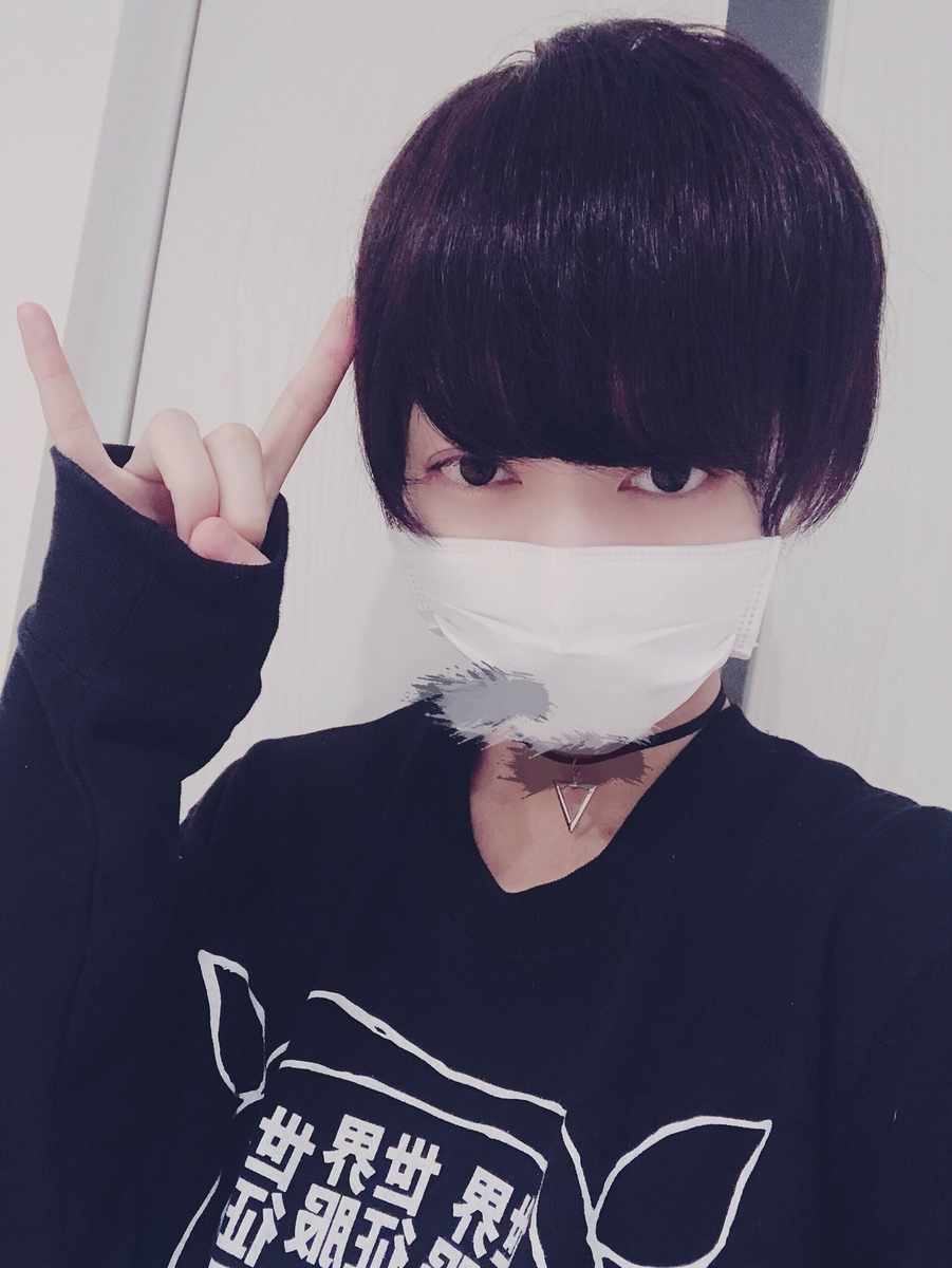 f:id:yuzubaferret:20190818152510j:plain