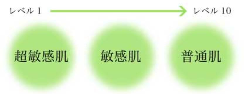 f:id:yuzubaferret:20190819014421p:plain
