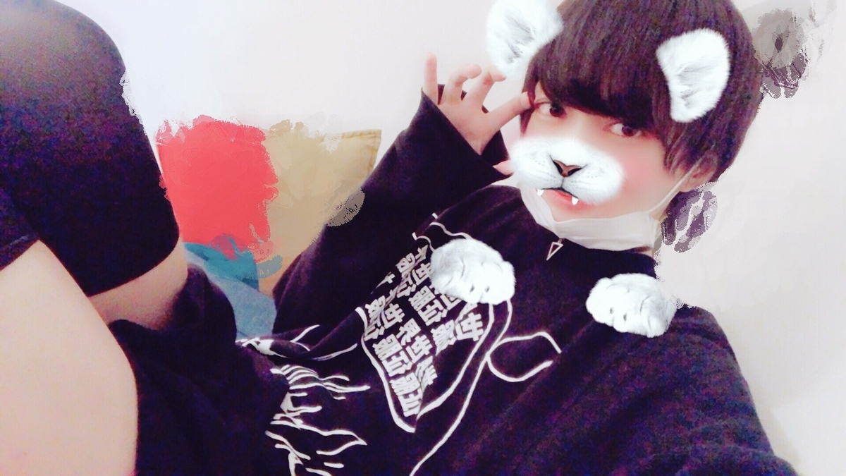 f:id:yuzubaferret:20190824224913j:plain