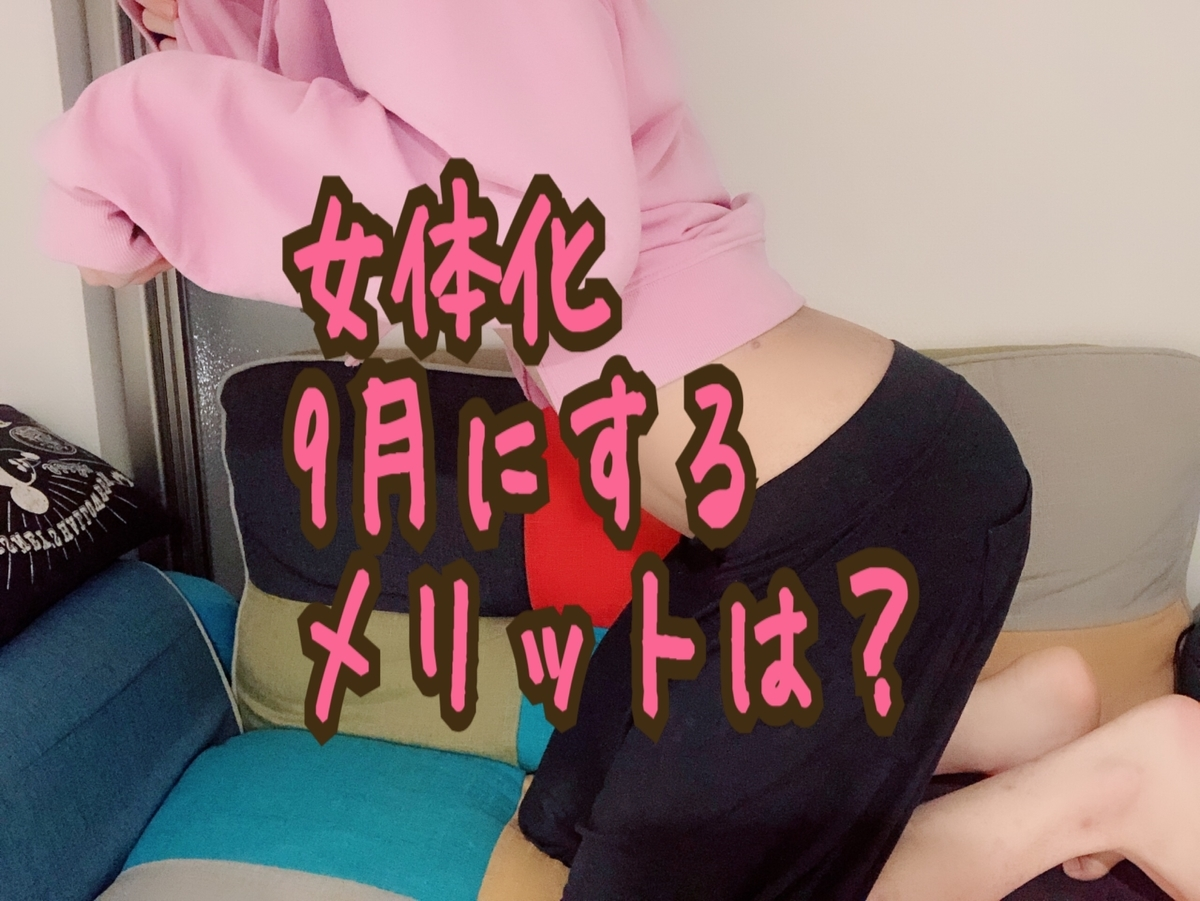 f:id:yuzubaferret:20190827195840j:plain