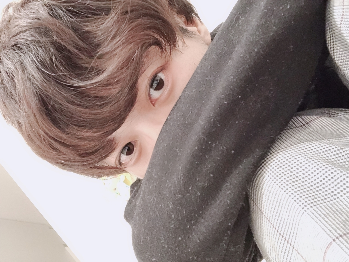 f:id:yuzubaferret:20190828113115j:plain