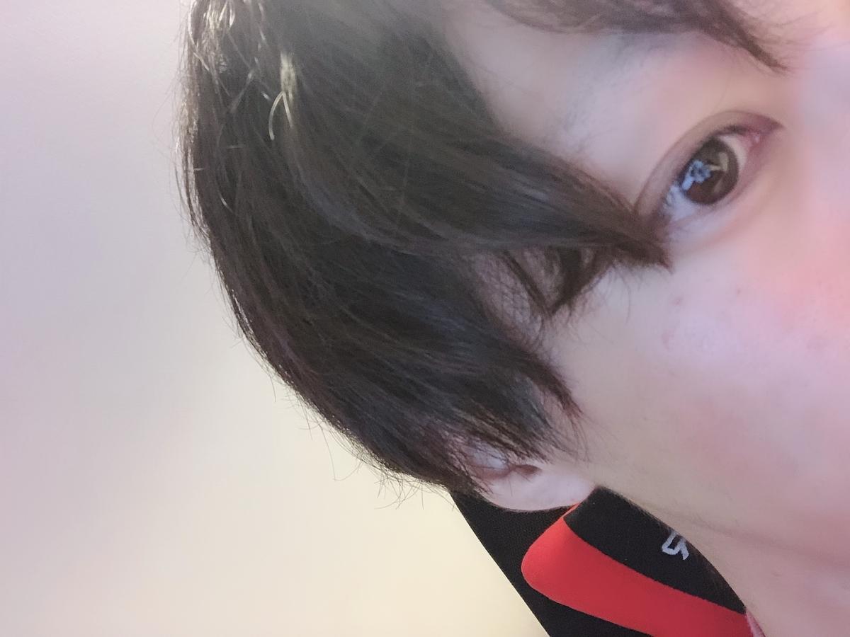 f:id:yuzubaferret:20190915120847j:plain