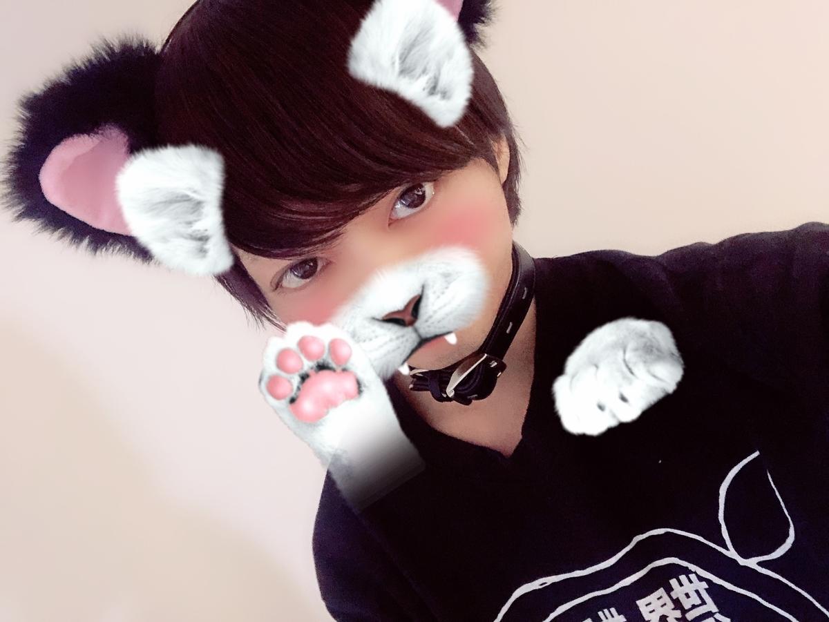 f:id:yuzubaferret:20190927130045j:plain
