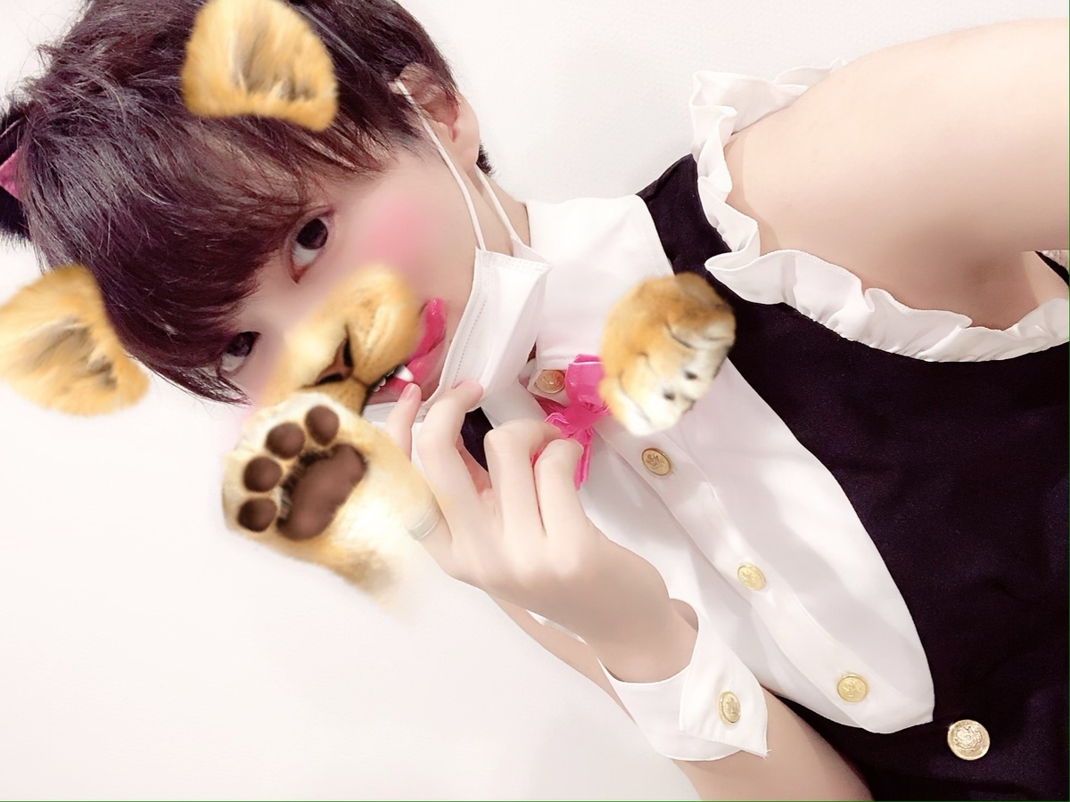 f:id:yuzubaferret:20191102141457j:plain